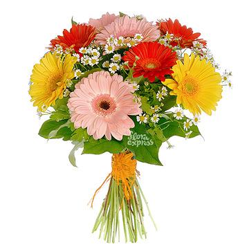 Фото цветов в абу-даби